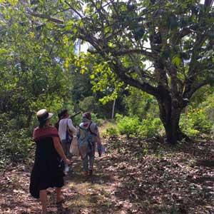 Muugoni-village-tour-Zanzibar-forest-walk