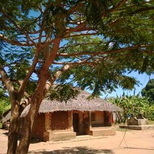 Uzi-island-Zanzibar-house