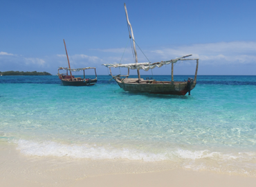Enjoy Zanzibar together with new friends on this Solo travel trip