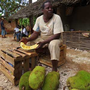 Man cutting jackfruit in Makunduchi