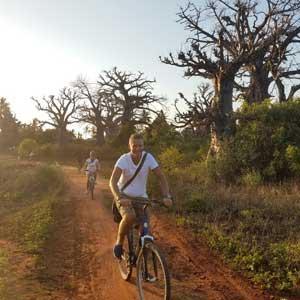 Makunduchi-village-tour-baobabs