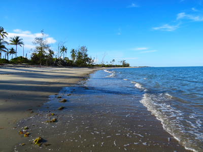 Stranden i Saadani, Simpy Saadani Camp