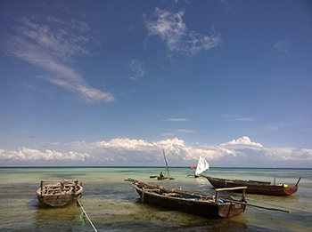 Dhows on Zanzibar beach