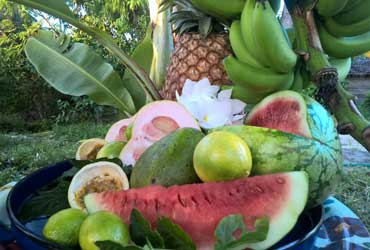 Fruit-Tasting-Jambiani