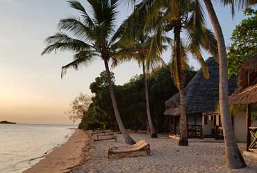 The bungalows on Chapwani Zanzibar are just on the beach