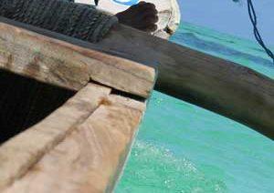 Jamiani-sailing-with-wood-trimaran
